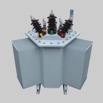Transformador de distribución / sumergido / AC / para la industria