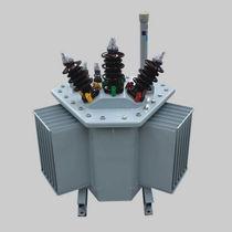 Transformador de distribución / sumergido / AC / de baja pérdida