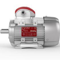 Motor trifásico / asíncrono / 380 V / para altas temperaturas