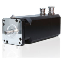 Servomotor trifásico / 560 V / 6 polos / antideflagrante