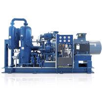 Grupo compresor de biogás / de tornillo / con presión positiva / con inyección de aceite