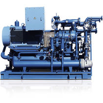 Grupo compresor de gas / de tornillo / con presión positiva / con inyección de aceite
