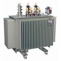 Transformador de distribución / sumergido / sellado herméticamente / compacto
