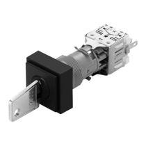 Interruptor de llave / multipolar / de corte / IP40