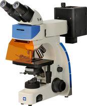 Microscopio óptico / de inspección / con cámara digital / FLIM