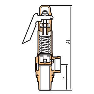 válvula de seguridad direccional