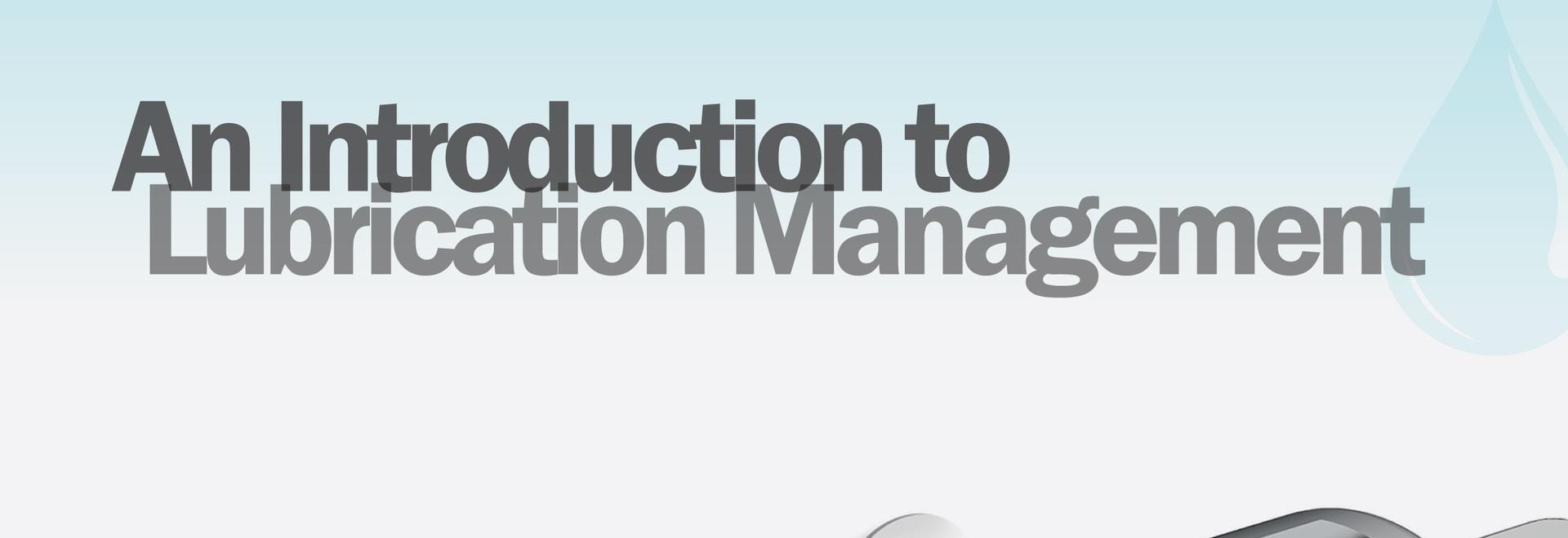 Libro Blanco: Una introducción a la gestión de la lubricación