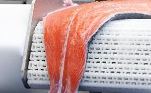 Procesamiento del pescado