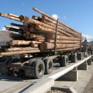 báscula puente para camión