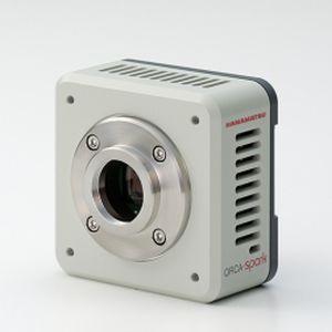cámara para microscopio
