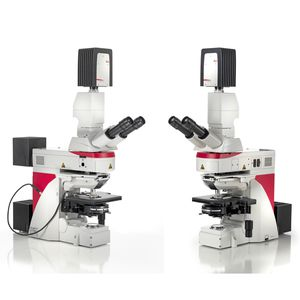 microscopio de laboratorio / óptico / recto / de fluorescencia