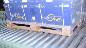 transportador de rodillos / para palés / de cartón / estacionario