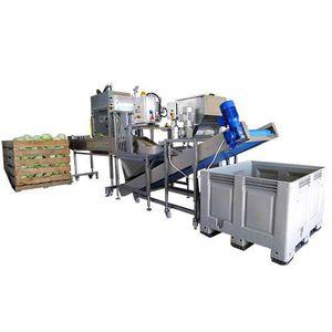 línea de procesamiento de hortalizas de coles