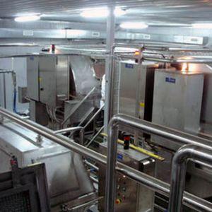 línea de producción de queso de queso blanco