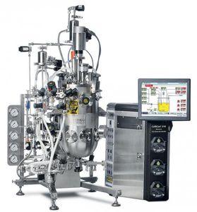 biorreactor piloto