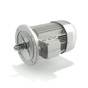 motor de alto rendimiento / trifásico / asíncrono / con freno DC
