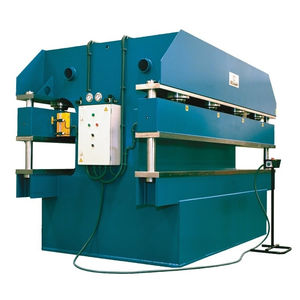 línea de dos prensas hidráulica
