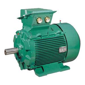 motor AC / trifásico / de inducción / 400V