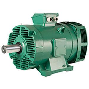 motor trifásico / de inducción / 400V / 380 V