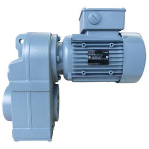 motorreductor AC / asíncrono / de dientes rectos / de ejes paralelos