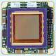 cámara tarjeta / de vigilancia / de color / CMOS