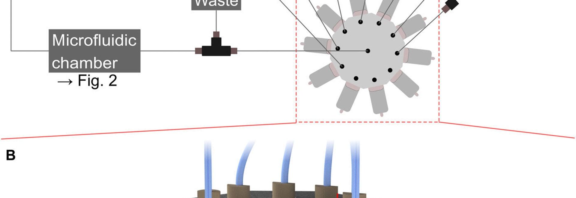 Los investigadores integran el sistema microfluidic en la impresora de DLW 3D para nanoprinting multimaterial