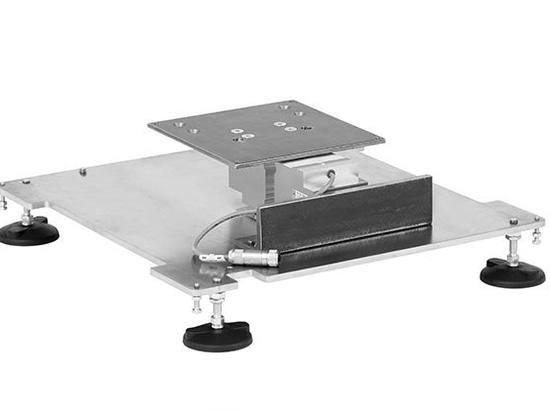 Escala de plataforma con la célula de carga del DMS