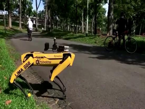 Un robot de Singapur impone un distanciamiento seguro entre los asistentes al parque