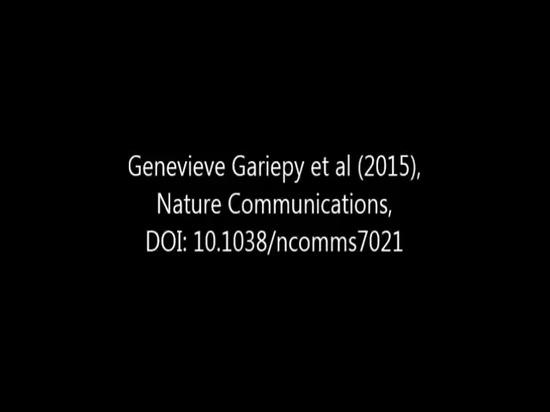 Comunicaciones de la naturaleza - el Solo-fotón sensible luz-en-lucha proyección de imagen