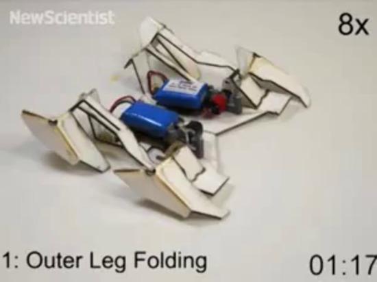 la robusteza Uno mismo-plegable del origami camina en sus la propia