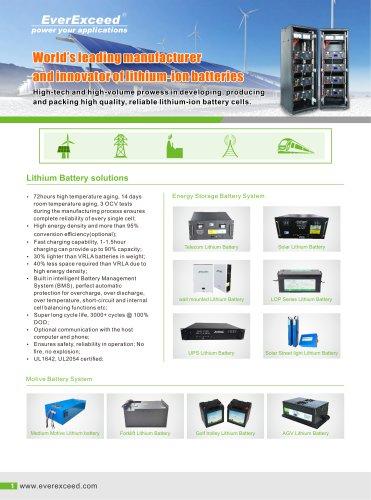 EverExceed Lithium batteries