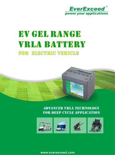 Lead-acid gel battery EV series