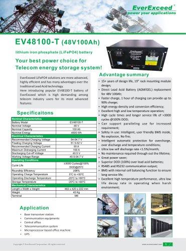 Lithium battery EV48100-T series