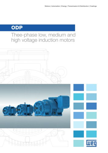 ODP - Thee-phase low, medium and high voltage induction motors
