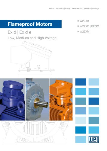 Three Phase Flameproof Motors - W22X and BFGC4 Series