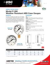 Model P-590 Weather Resistant ABS Case Gauges