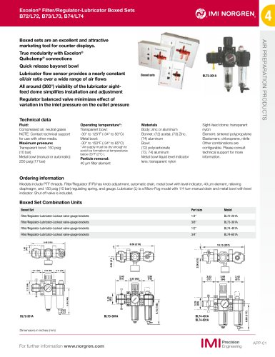Excelon BL74 Series Combination FRL