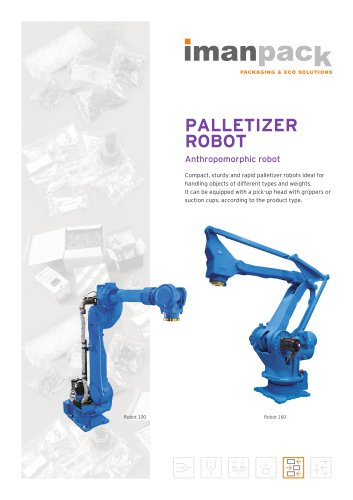 Palletizer robot 100-160