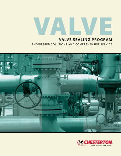 Valve Sealing Program