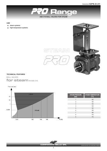 PRO RANGE ball valve for steam