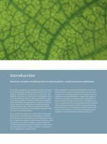 Instrumentación y analítica de proceso, sistemas de pesaje - 3