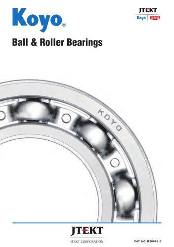 Ball & Roller Bearings