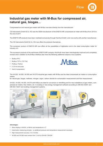 Data sheet M-Bus - Industrial gas meter