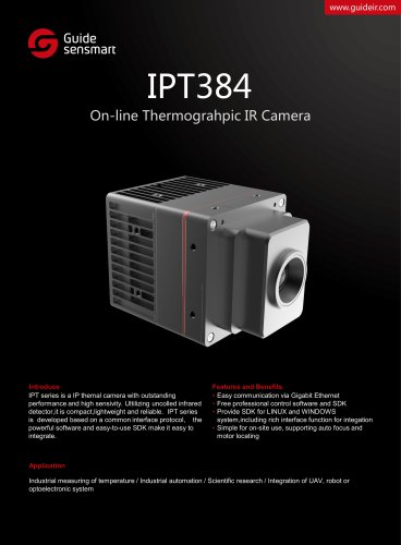 IPT384 On-line Thermograhpic IR Camera