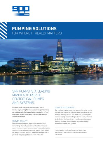 PUMPING SOLUTIONS FOR WHERE IT REALLY MATTERS