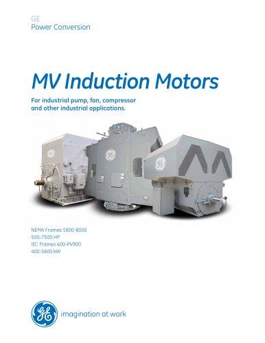 MV Induction Motors 500-7500 HP, 400-5600 kW