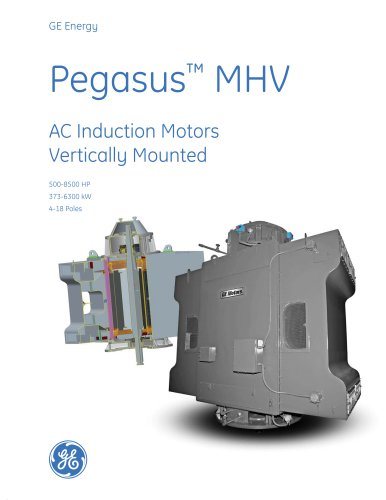 Pegasus MHV - AC Induction Motors Vertically Mounted