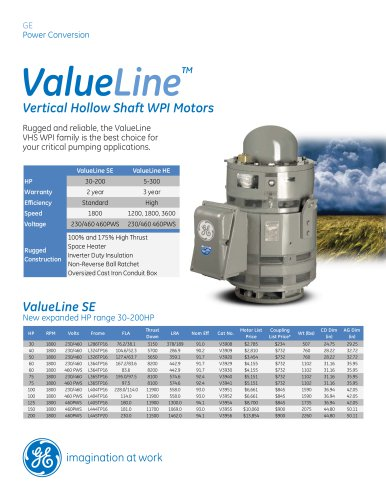 ValueLine High Efficiency, Vertical Hollow Shaft WPI High Thrust Motors