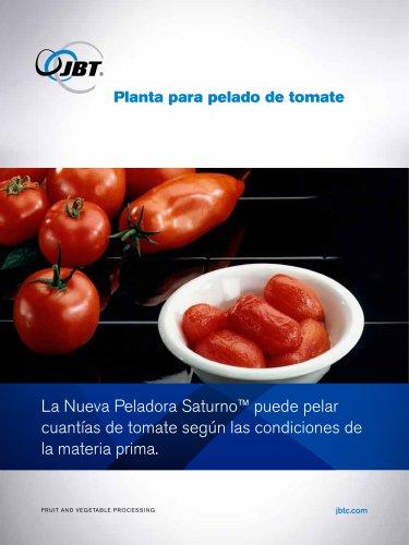 Planta para pelado de tomate