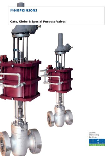 Hopkinsons Gate, Globe & special purpose valves